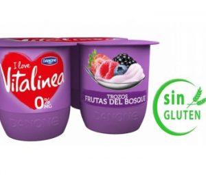 Yogur de frutos del bosque Vitalinea